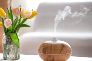 essential oil diffusers and pet health